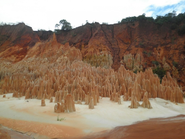 West of Madagascar, Red Tsingys