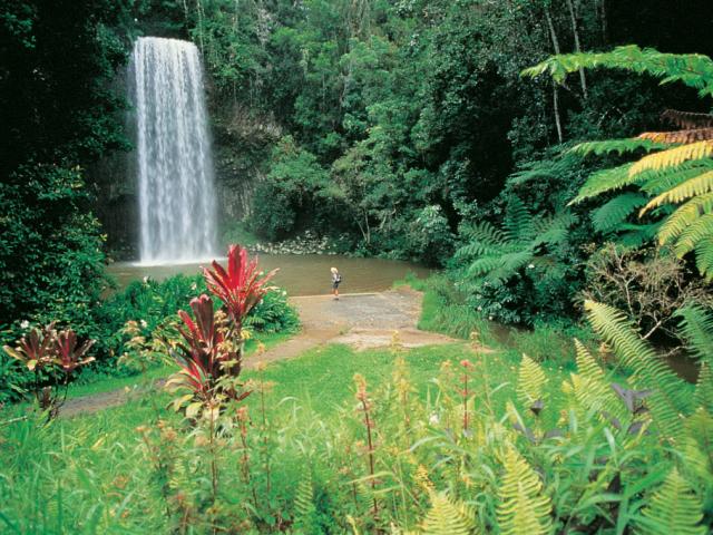 Queensland, Millaa Millaa Falls