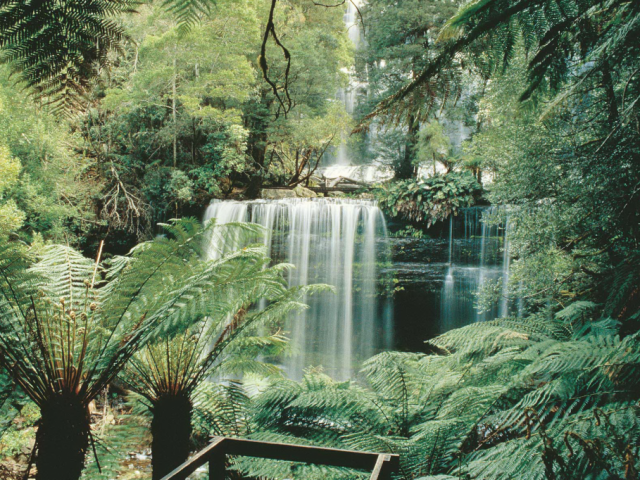 Tasmanian Wonders | Russell Falls