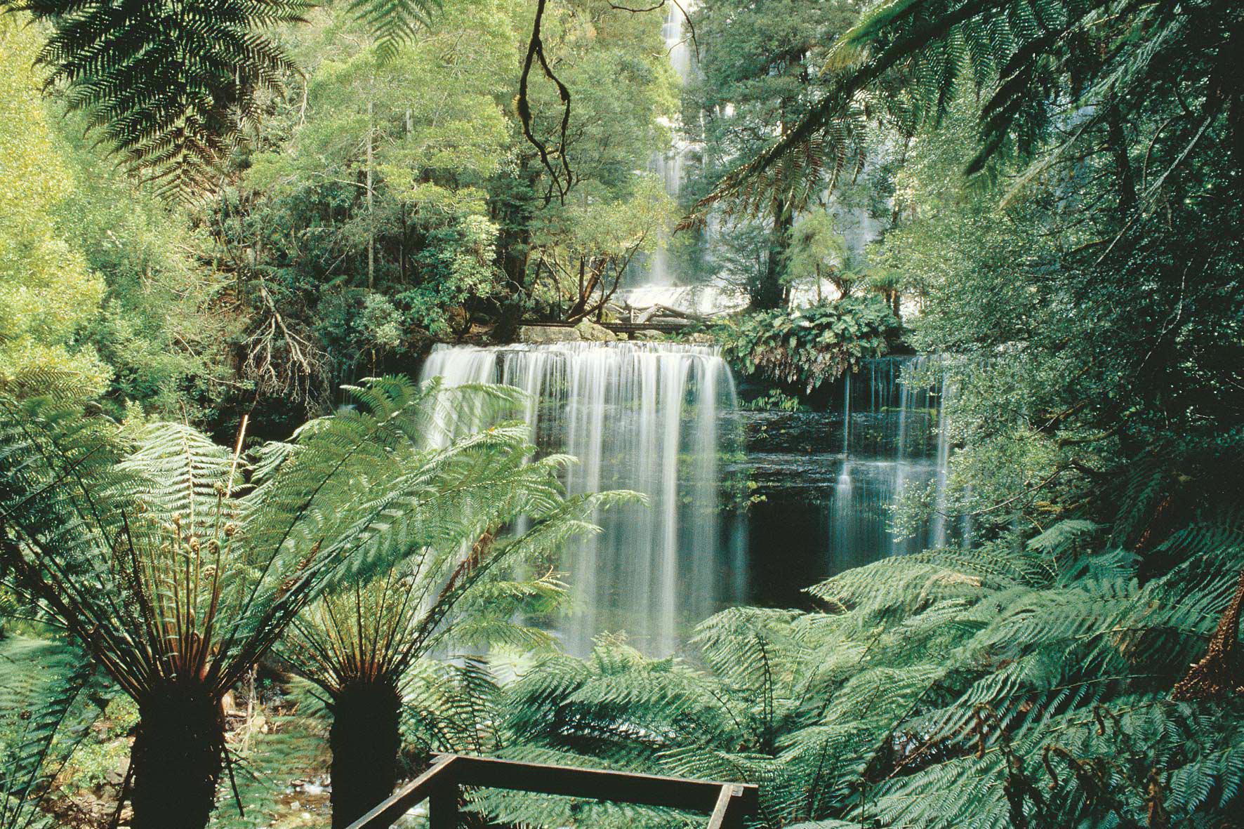 Tasmania, Russell Falls