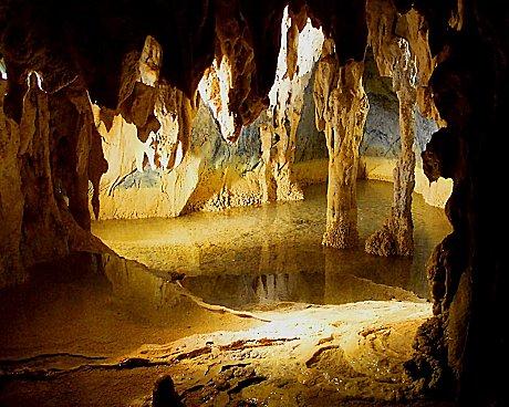 Gulf Savannah Wanderer, Chillagoe limestone caves