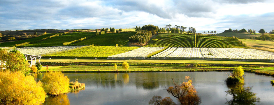 Tasmania, Josef Chromy Winery
