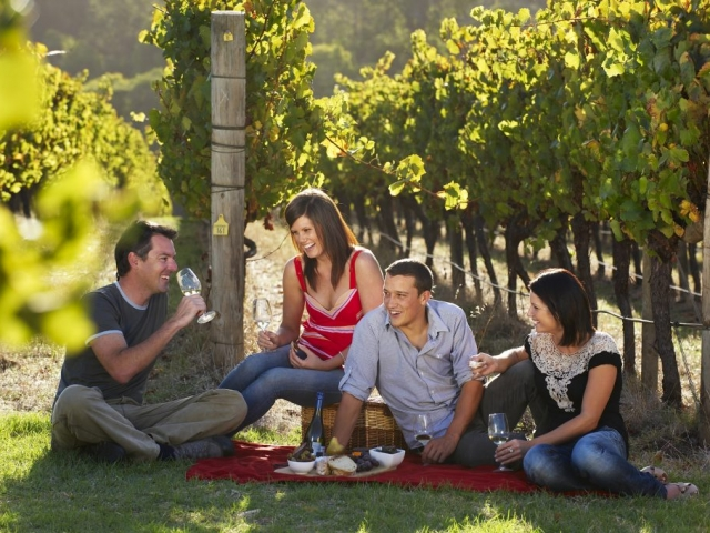 Margaret River Getaway - Food Lovers Experience, Margaret River - AMRTA - vineyard (credit)