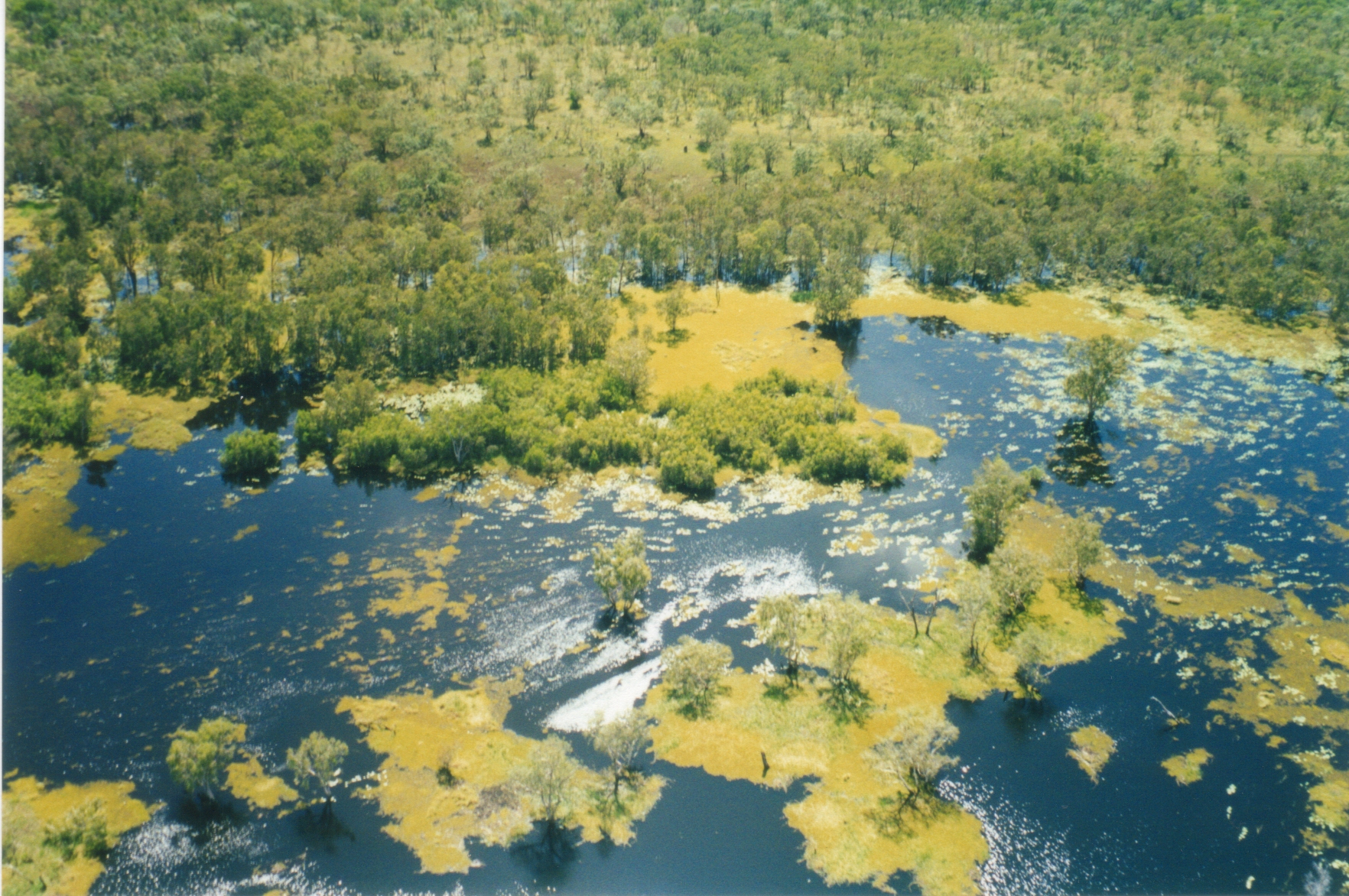 Northern Territory | Yellow Waters, Kakadu National Park, Top End