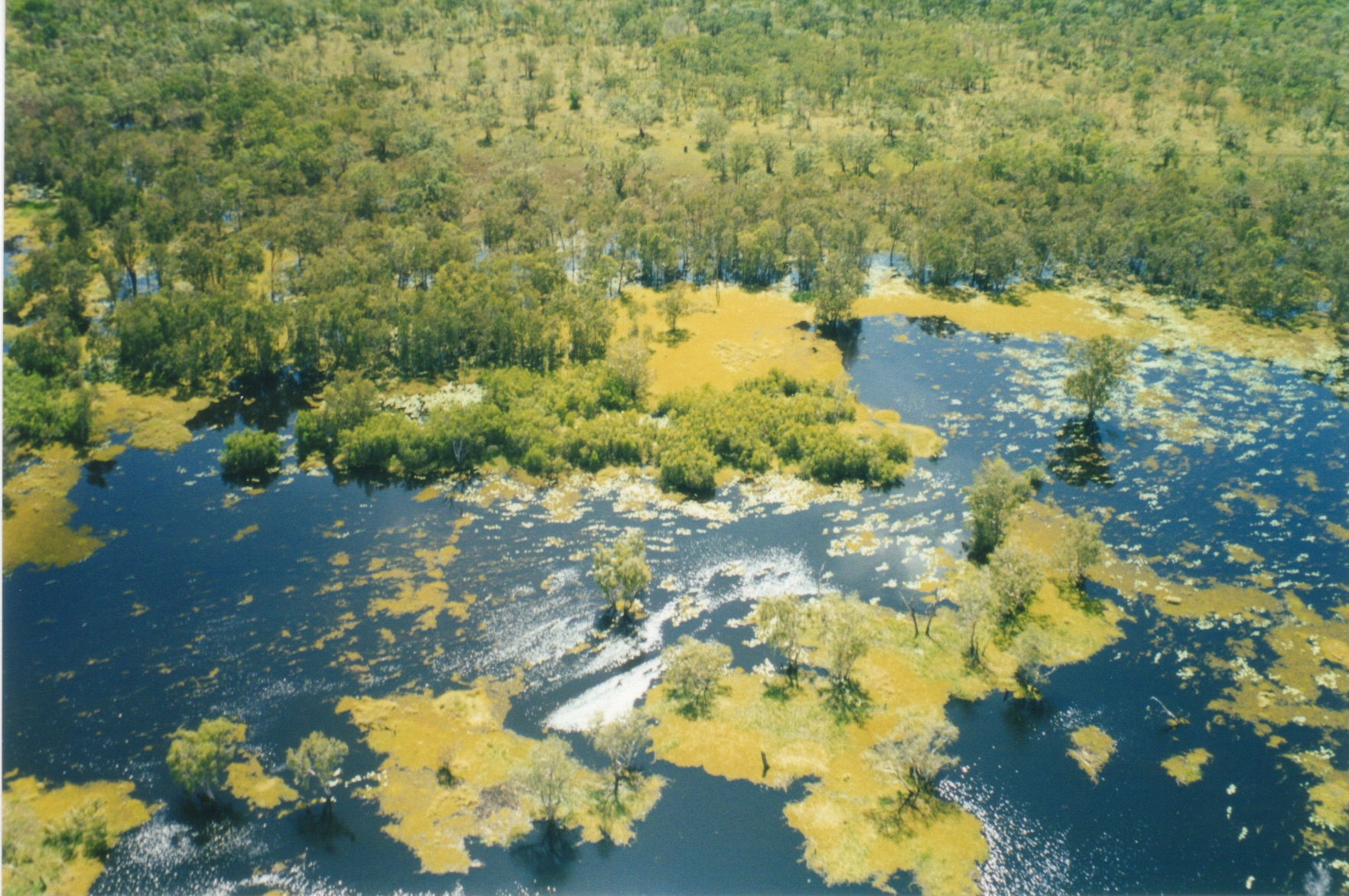 Northern Territory, Kakadu, Yellow Waters