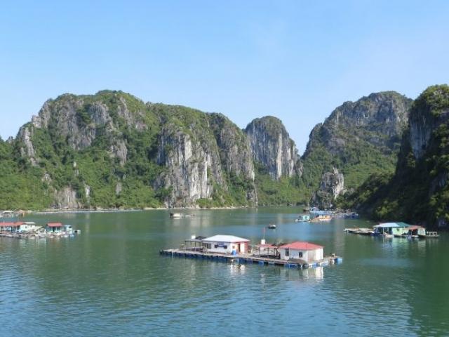 Halong Bay Scene