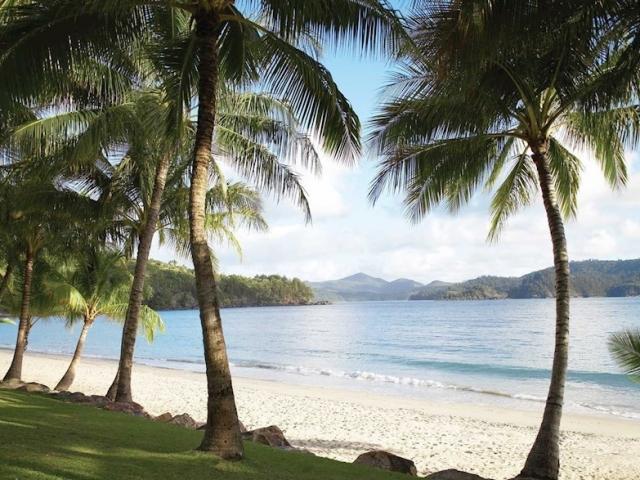 East Coast Islands & Rainforest | Catseye Beach, Hamilton Island
