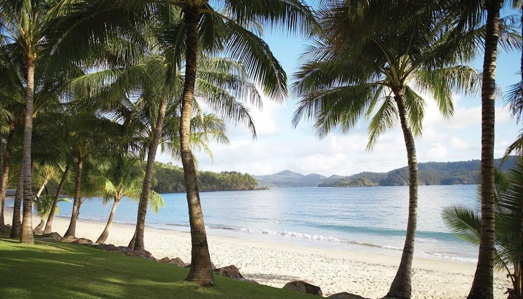 East Coast Islands & Rainforest | Catseye Beach, Hamilton Island, Queensland