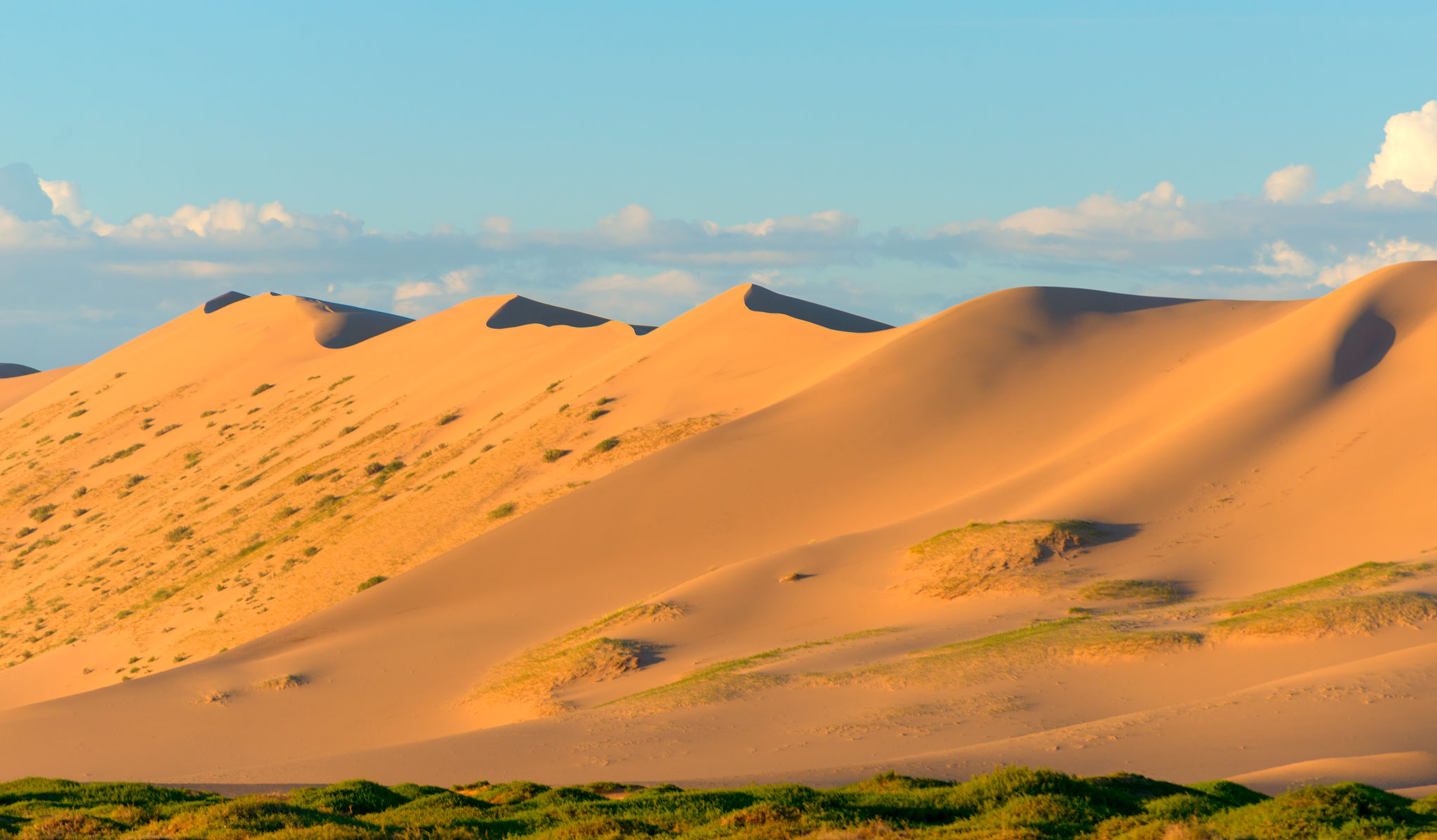 Mongolia, Khongor Sand Dunes