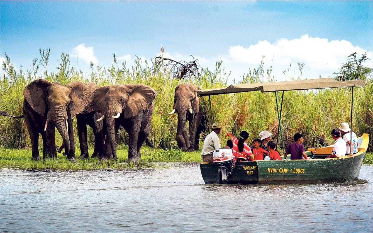 Malawi, Liwonde National Park, Mvuu Camp & Lodge