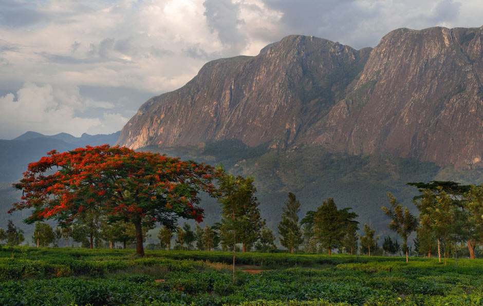 Malawi, Mulanje Mountains