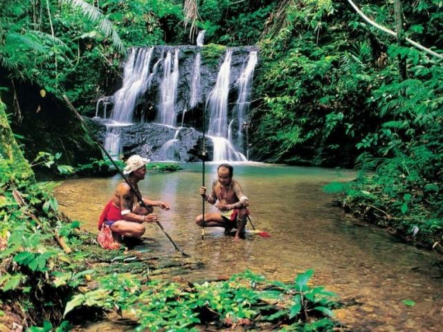 Malaysia, Taman Negara Jungle