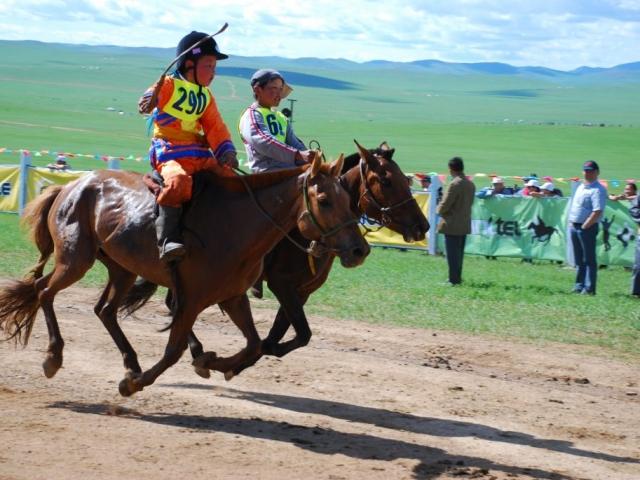 Mongolia, Przjevalski Horse Racing