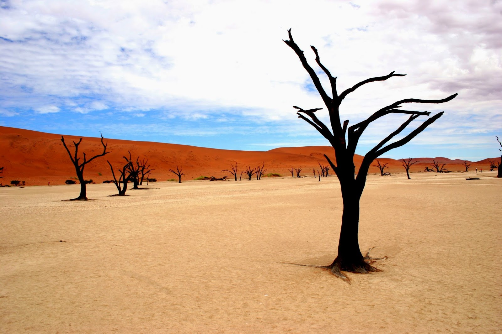 Highlights of Namibia, Namib Naukluft National Park