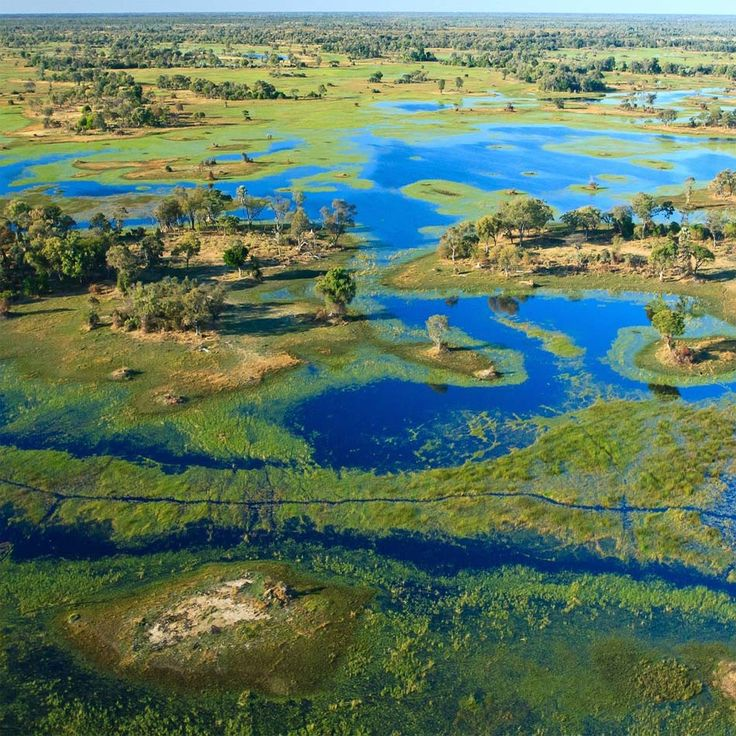 Botswana in Focus - Okavango Delta, Botswana