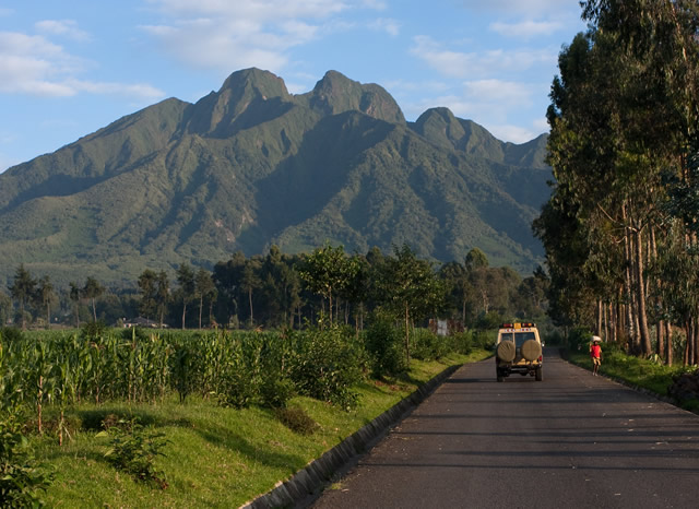 Rwanda, Volcanoes National Park