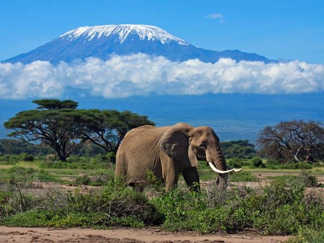 Tanzania, Mount Kilamanjaro