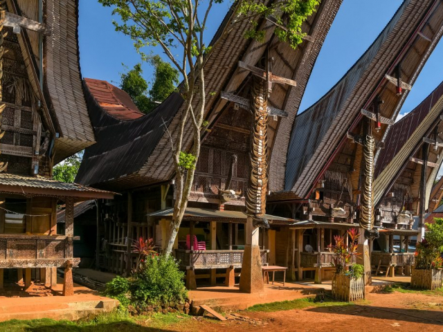 South Sulawesi Discovery | Torajan Village, Sulawesi, Indonesia