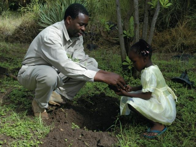 Tree planting, Amboseli