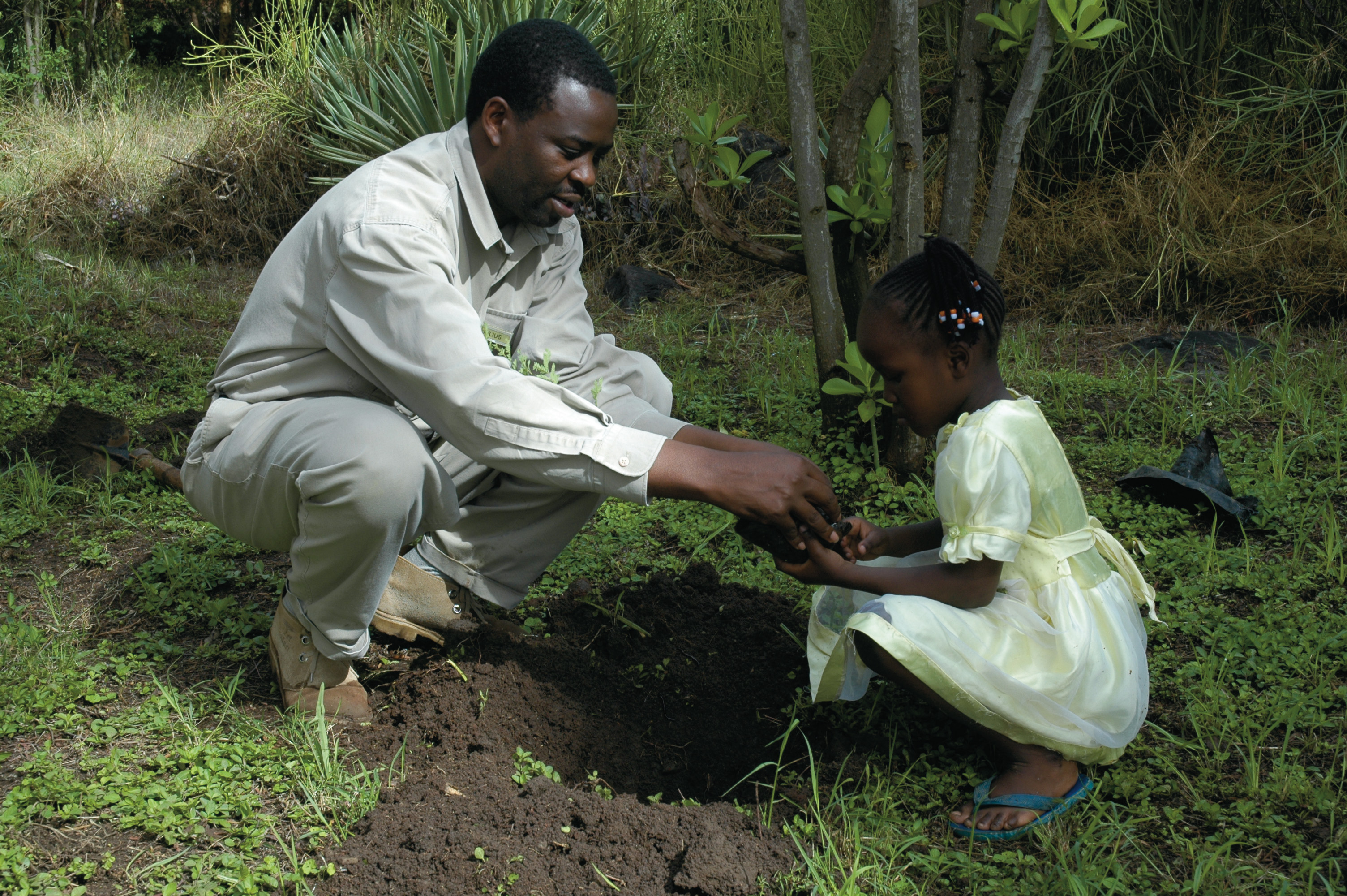 Cheetah Safari, Tree planting, Amboseli