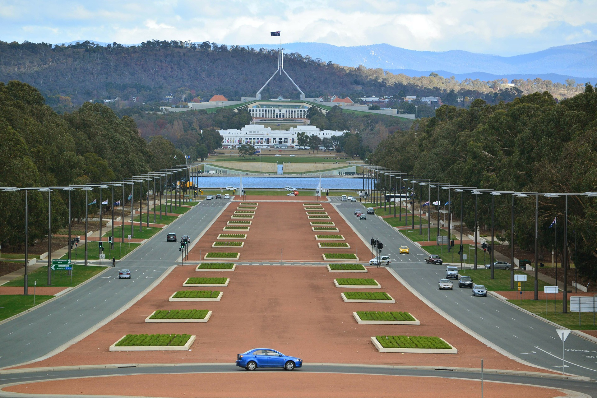 Capital Blooms | Canberra, Australian Capital Territory