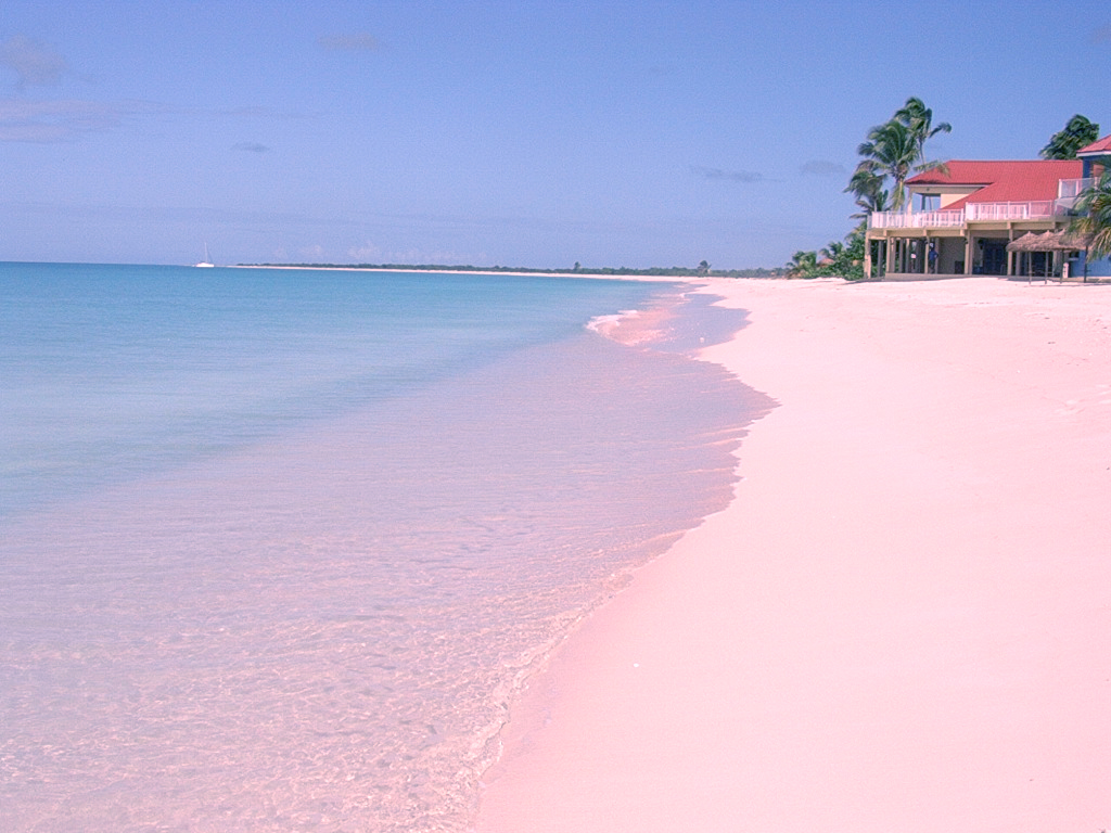 Bahamas Dream Beaches, Bahamas, Harbour Island, Pink Sands Beach