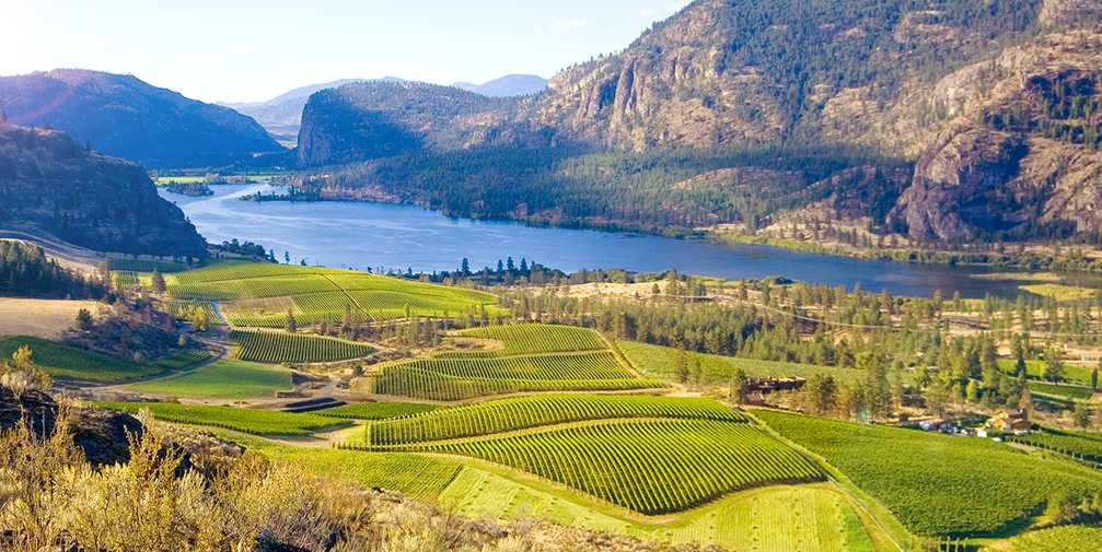 Canada, British Columbia Wine Country