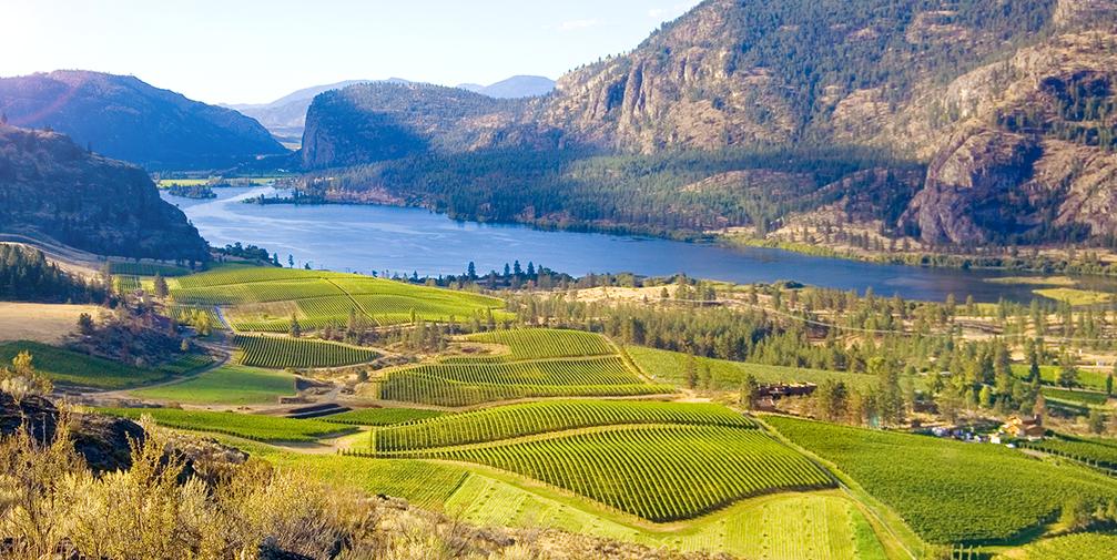Canada, British Columbia Wine Country
