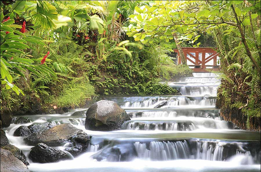 Costa Rica, Arenal Volcano, Tabacon Hot Springs