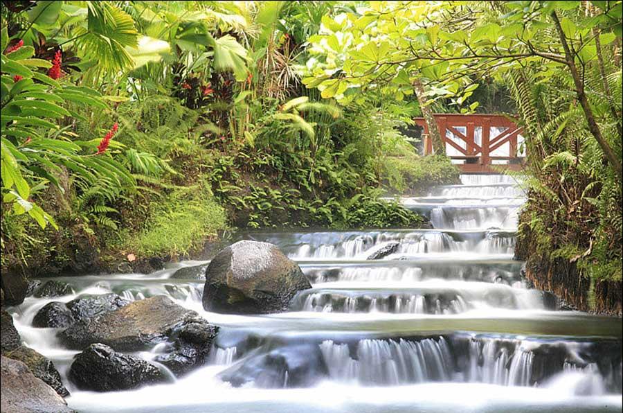 Arenal & Monteverde | Tabacon Hot Springs, Arenal Volcano, Costa Rica