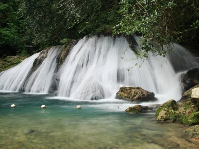 Jamaica, Montane Forrest, Reach Falls