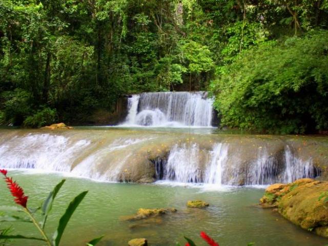 Discover Jamaica, YS falls