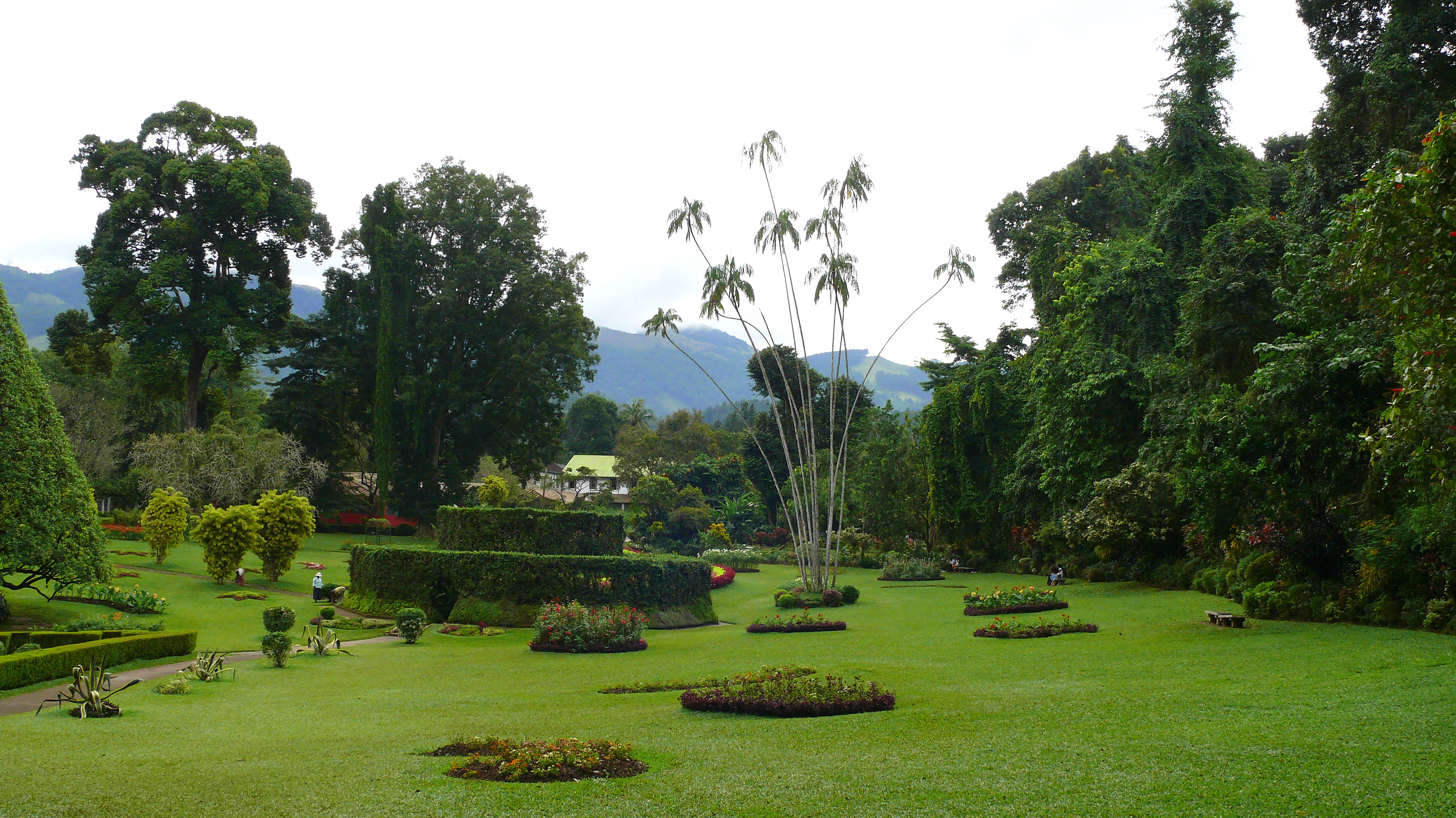 Boutique Sri Lanka - Royal Botanical Garden, Peradeniya, Sri Lanka