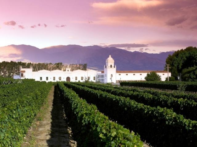 Argentina, Cafayate, Bodega El Esteco Winery