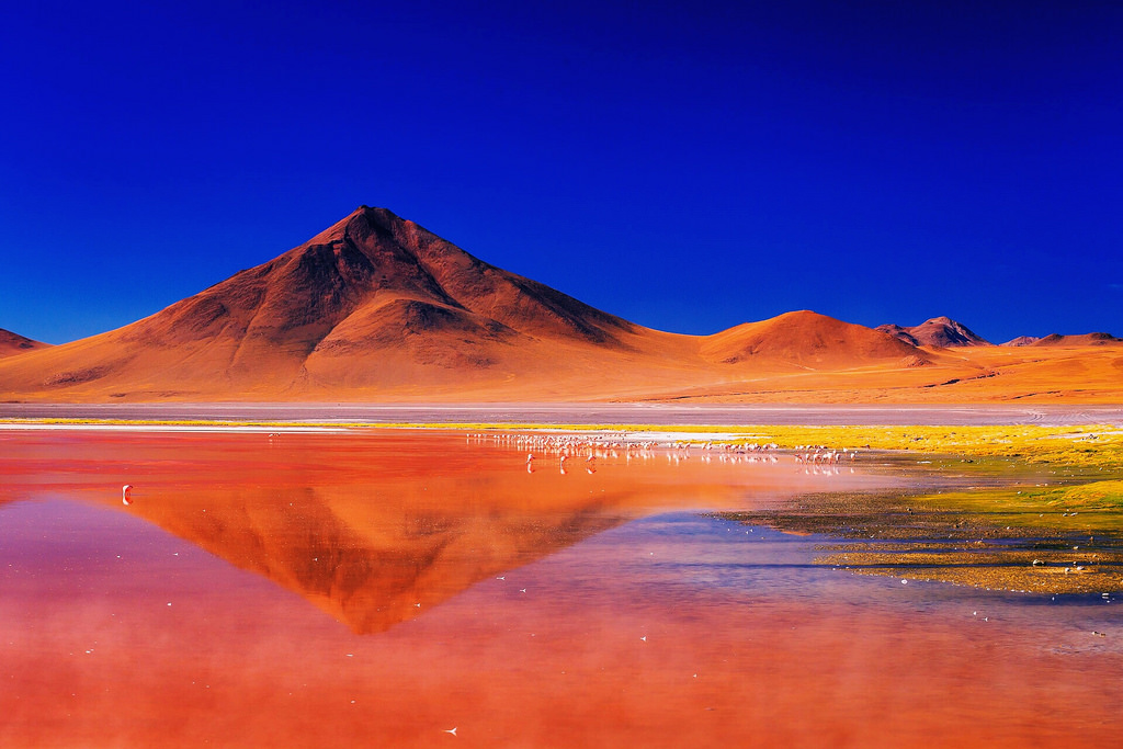 Bolivia, Laguna Colorada (Red Lagoon)
