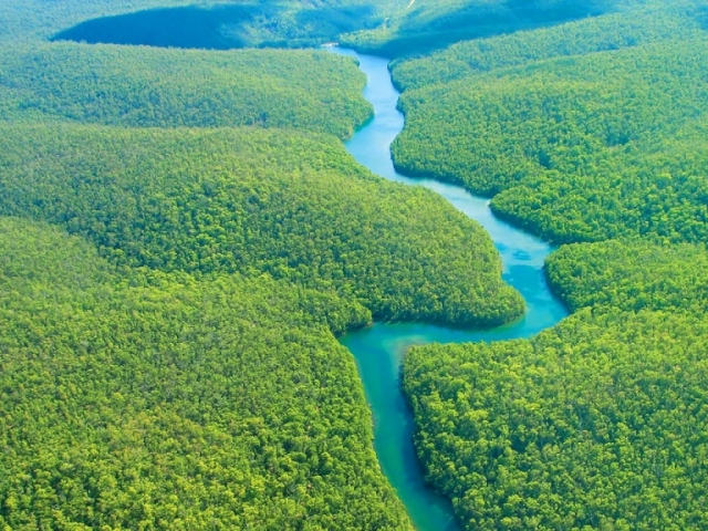 Brazil, Amazon Rainforest
