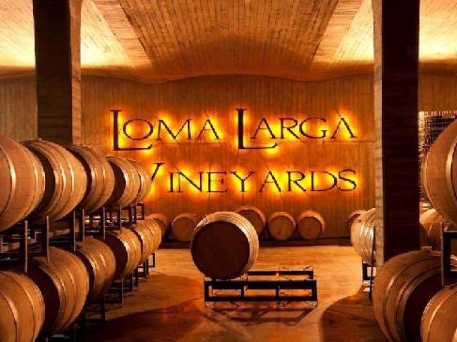 Chile, Casablanca Valley, Loma Larga Vineyards
