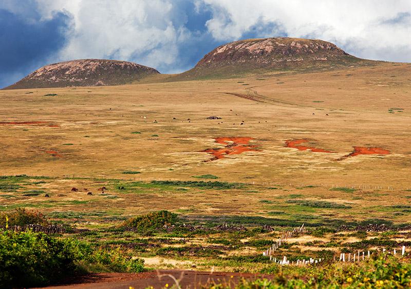 Explora En Rapa Nui | Terevaka volcano, Easter Island, Chile