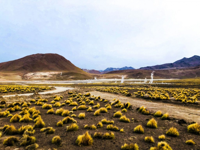 Discover Chile | Geysers del Tatio, Chile