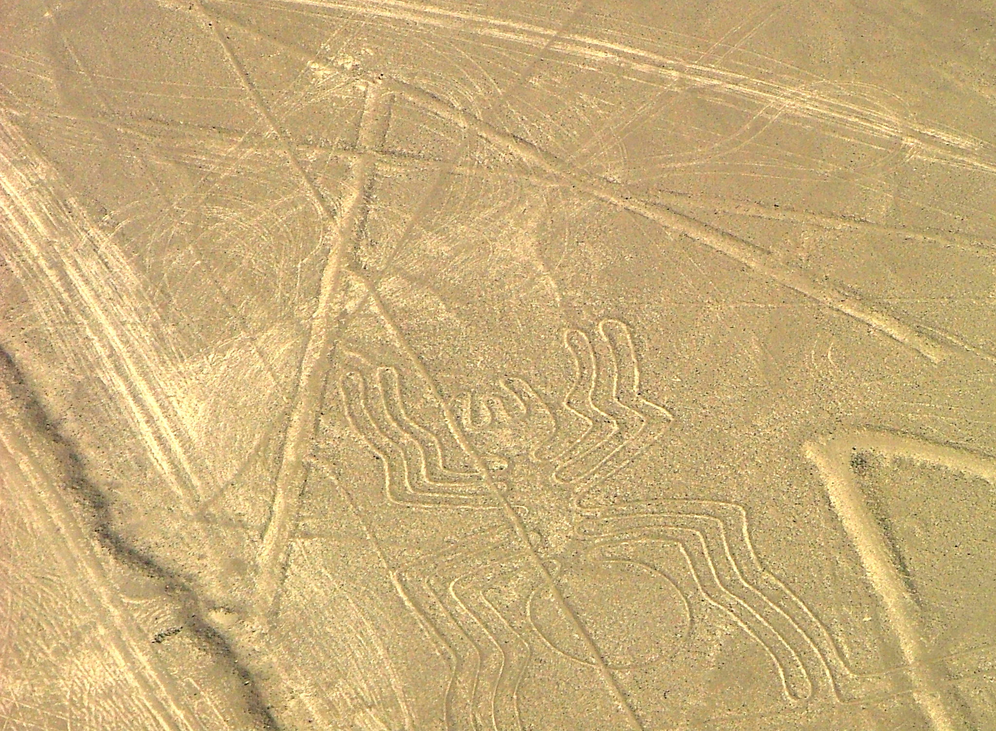 Land of the Incas | Nazca Lines, Peru