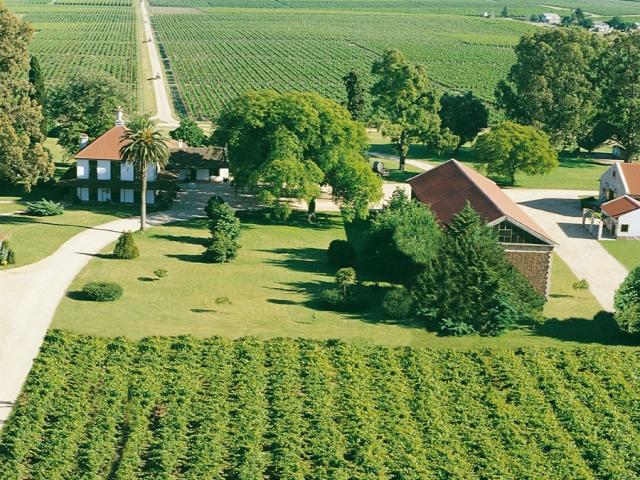 Uruguay, Montevideo, Juanico Winery