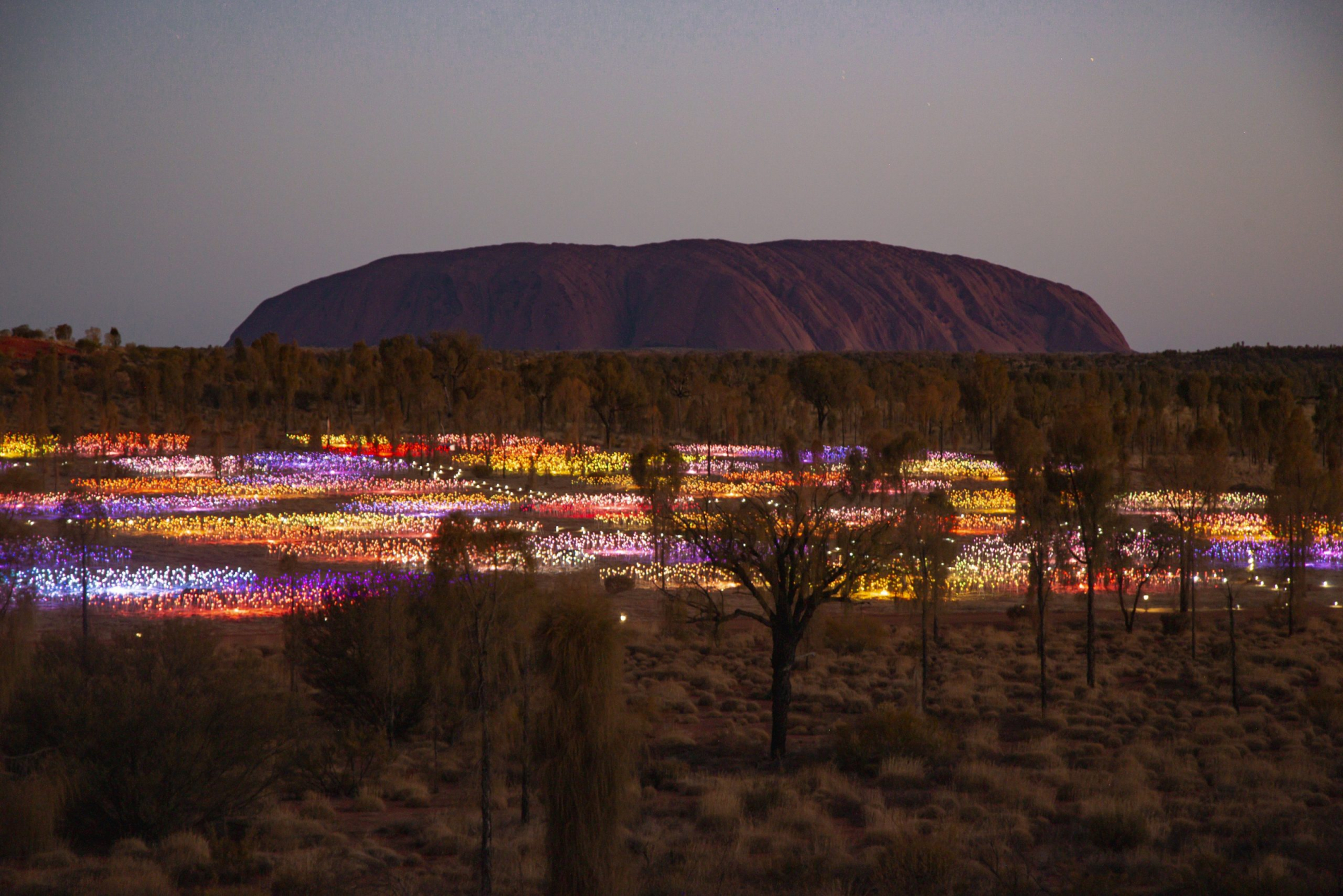 Red Centre Highlights | Field of Light, Uluru, Uluru-Kata Tjuta National Park, Red Centre, Northern Territory