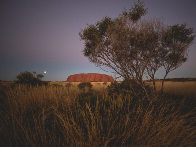 Uluru & Kata Tjuta Sights & Sounds | Uluru at night, Northern Territory