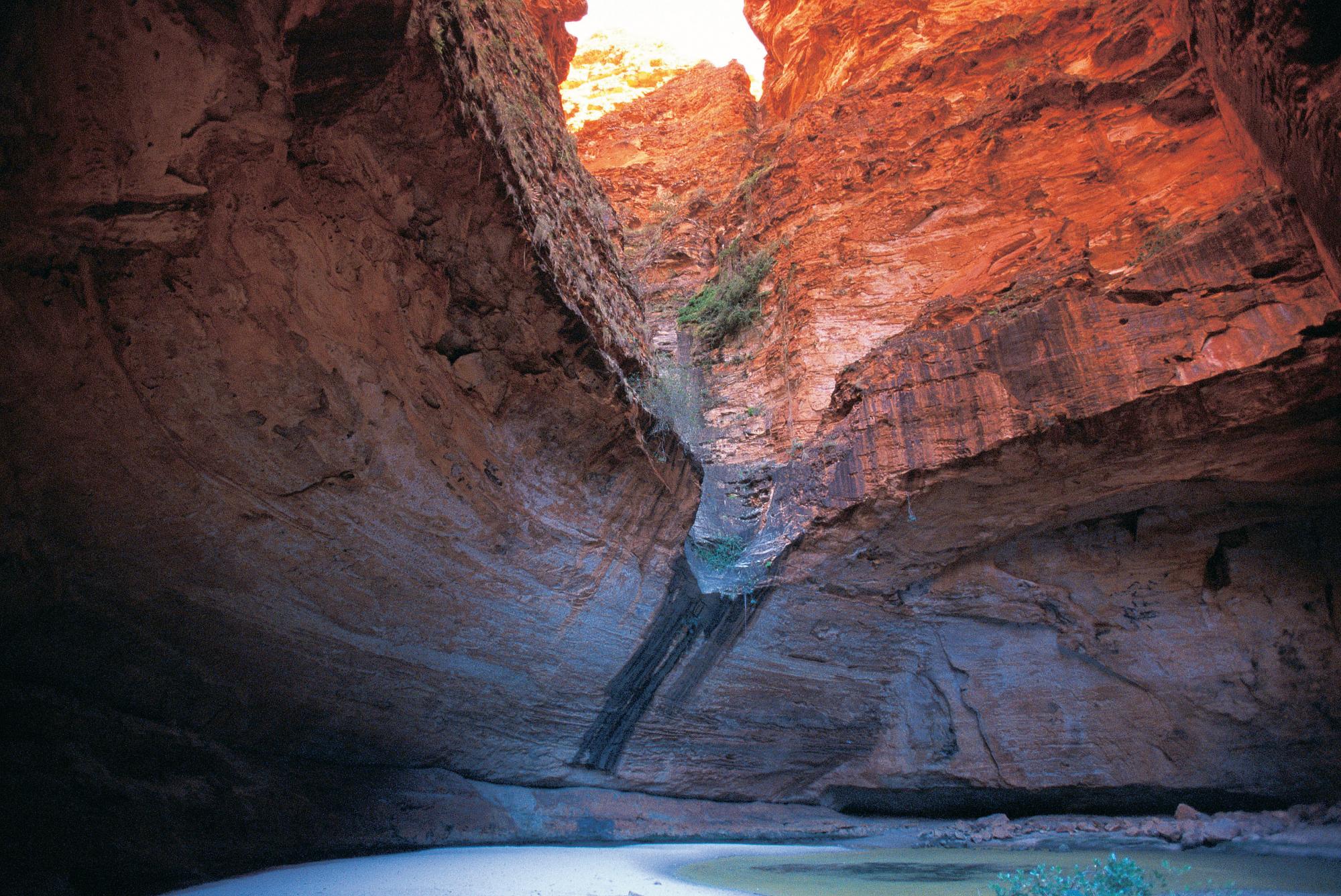 Kimberley Express   Cathedral Gorge, Bungle Bungle, Purnululu National Park, The Kimberley, North West, Western Australia