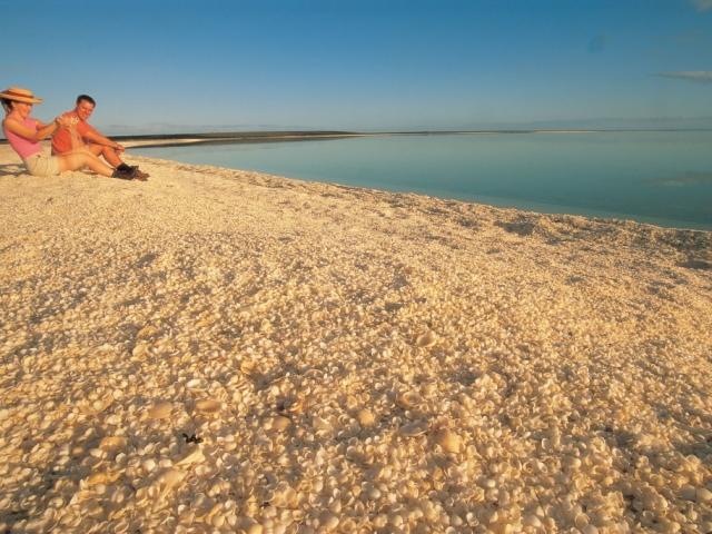 West Coast Explorer | Shell Beach