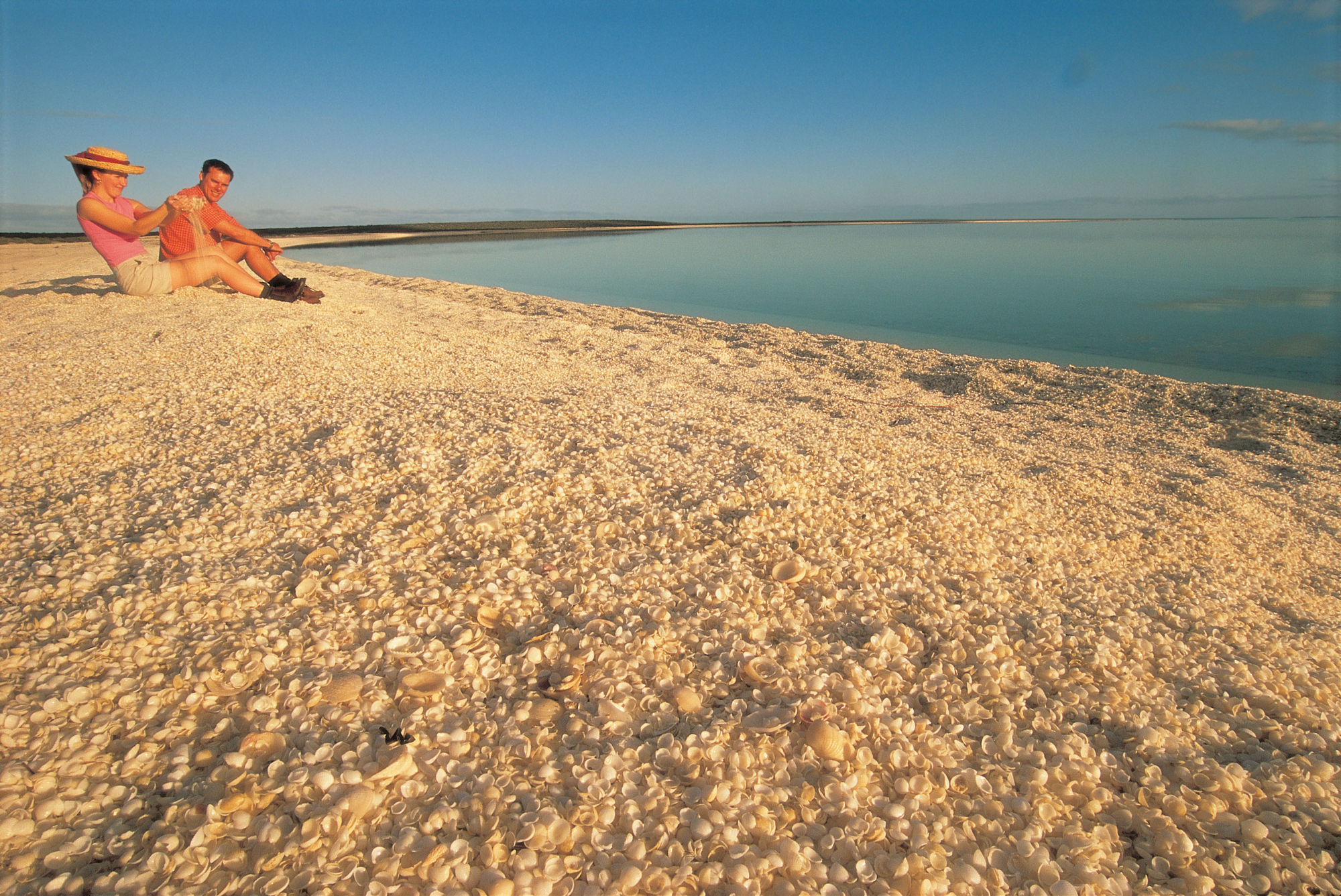 West Coast Explorer | Shell Beach, Shark Bay, Coral Coast, Western Australia