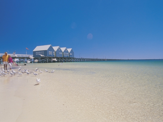 Margaret River, Tree Top & Albany, Busselton Jetty