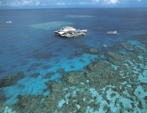 Carins & The Great Barrier Reef | Great Barrier Reef, Queensland