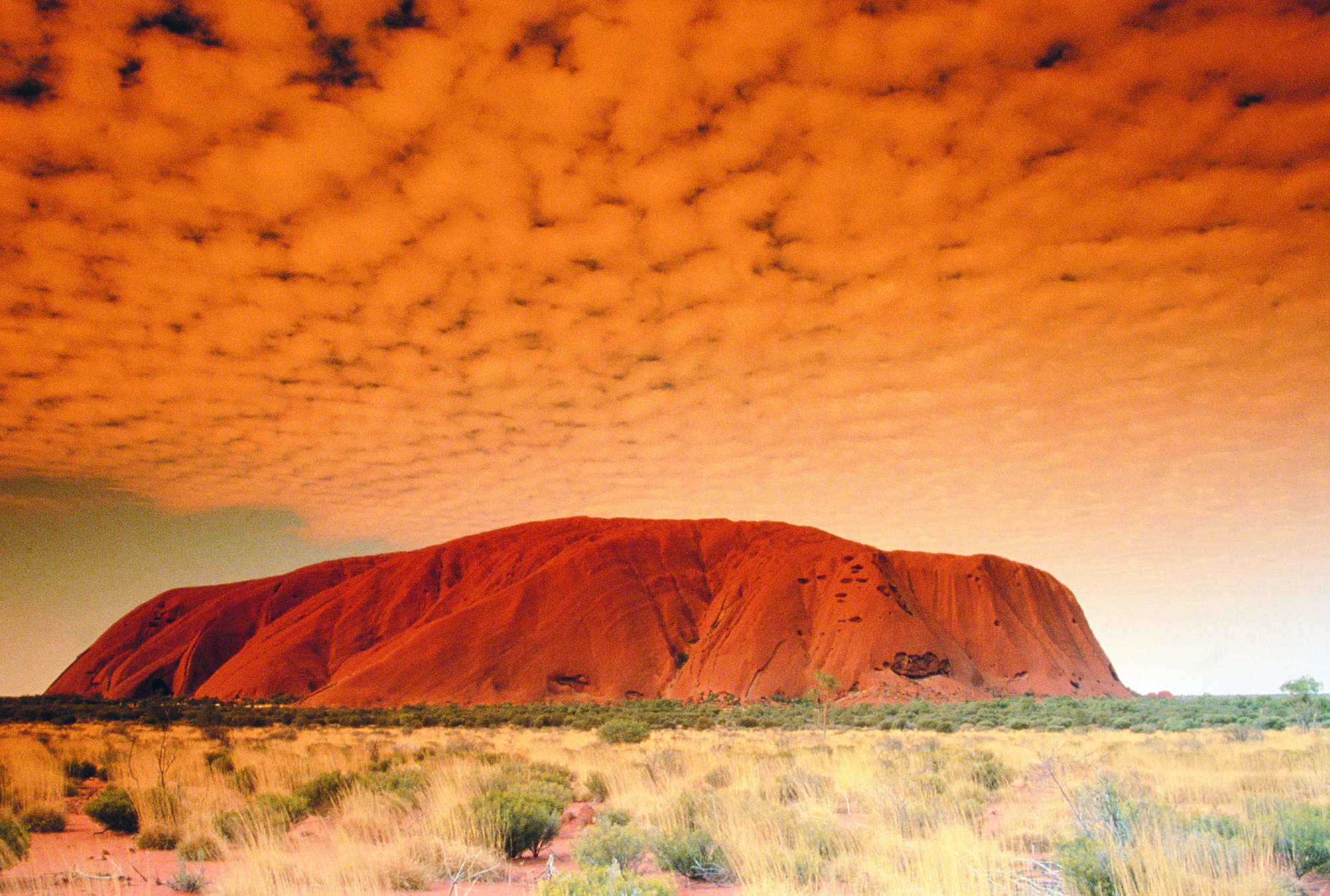 Outback Explorer | Uluru, Uluru-Kata Tjuta National Park, Central Australia, Northern Territory