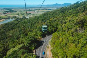 Tropical Reef & Rainforest | Skyrail Rainforest Cableway, Smithfield, Queensland